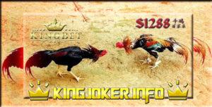 Situs Sabung Ayam S1288 Terbaik Tahun Ini, Sedang Ramai!