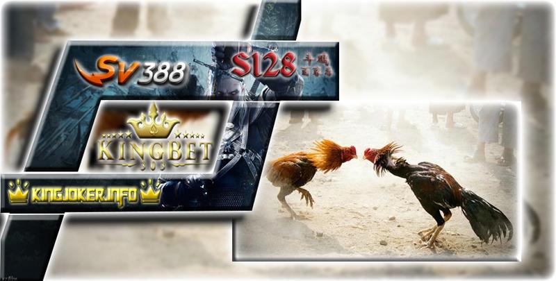 Arena Live S1288 Sabung Ayam Pisau Taji Terseru Saat Ini