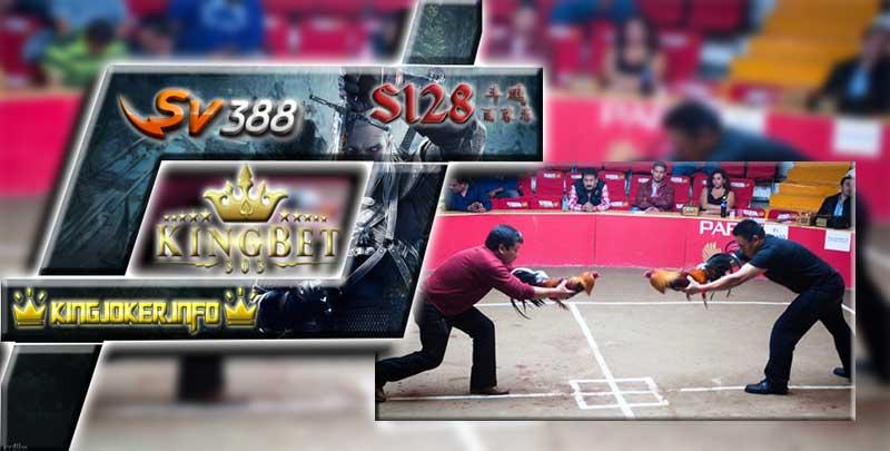 Arena Sabung Ayam Daftar S128 Deposit Bank BCA 24 Jam Nonstop